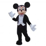 Mickey Mouse Cartoon Costumes