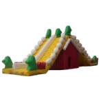 lovely inflatable slide