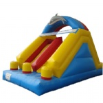dophine inflatable double slide