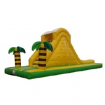 Cocopalm inflatable water slide